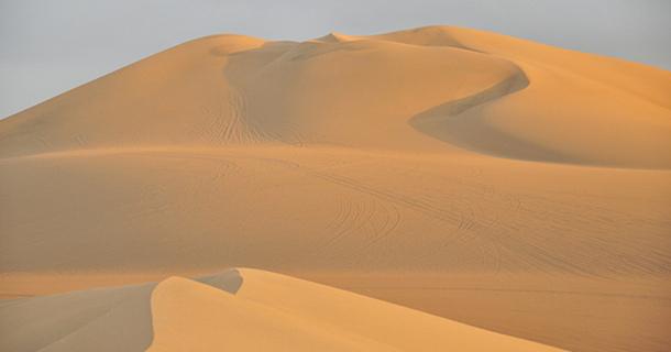 Stikliukai iš Gobio dykumos