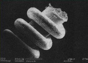 Nano technologijos iš ledynmečio