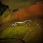 Didžiosios Britanijos baltasis arklys