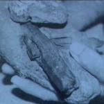 65 mln. metų uolienoje geležinis vamzdis