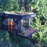 Ofisas medyje