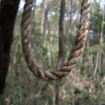 Aokigahara- savižudžių miškas