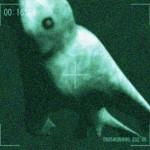 Paslaptingos būtybės Antarktidoje