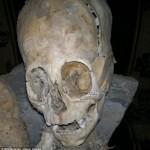 Rasta ateivių kaukolė – spėja mokslininkai