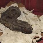 Milžiniškas žmogaus pirštas rastas Egipte