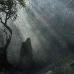 Transilvanijos Bermudų Trikampio miškas