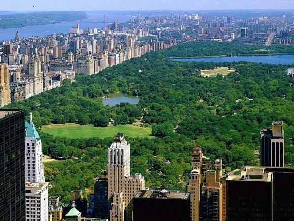 cenrinis niujorko parkas 2