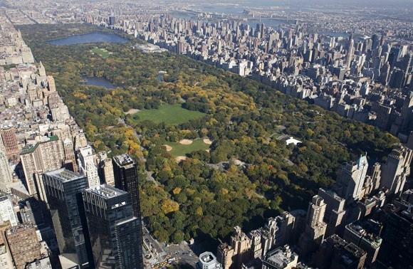 centrinis niujorko parkas 6
