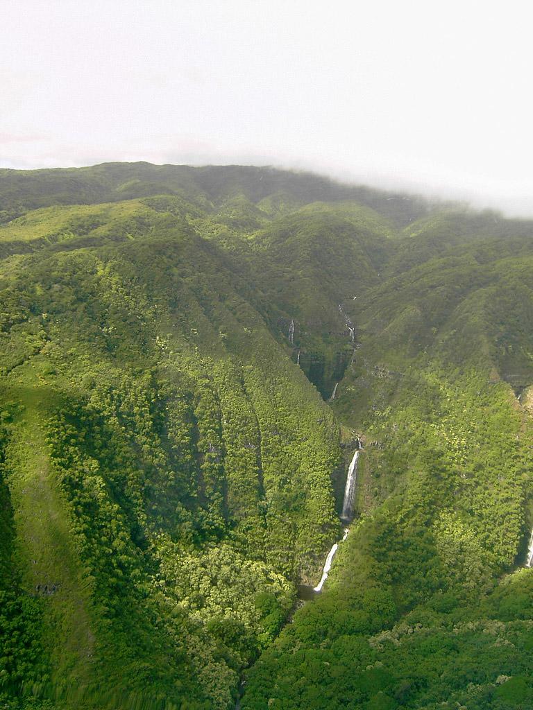 havaju kriokliai 2