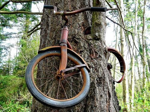 dviratis medyje 3