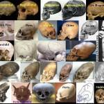 Paslaptingos kaukolės rastos visame pasaulyje
