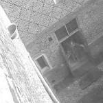 Hamtono karališkųjų rūmų vaiduokliai