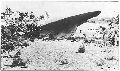 Spalvinga istorija – Kalahario dykumos NSO