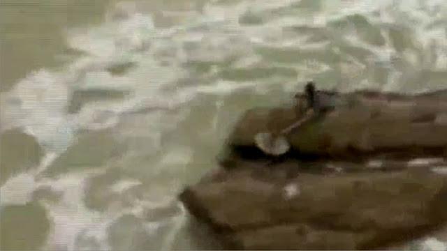 Undinė užfiksuota vaizdo įraše