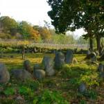 Paslaptingas Oshoro akmenų ratas