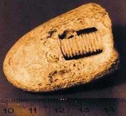Geležinis varžtas, kuriam 300 milijonų metų