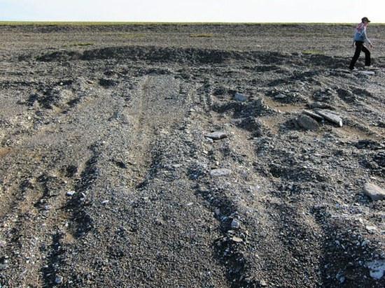 pedsakai salia mongolijos ezero 2