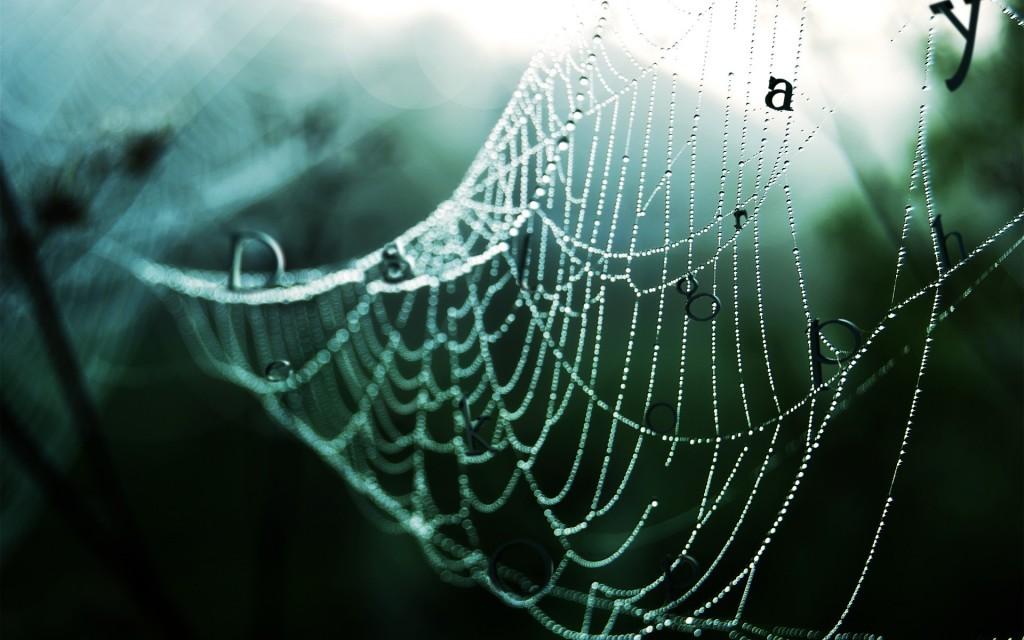 Juodojo voro pranašystės