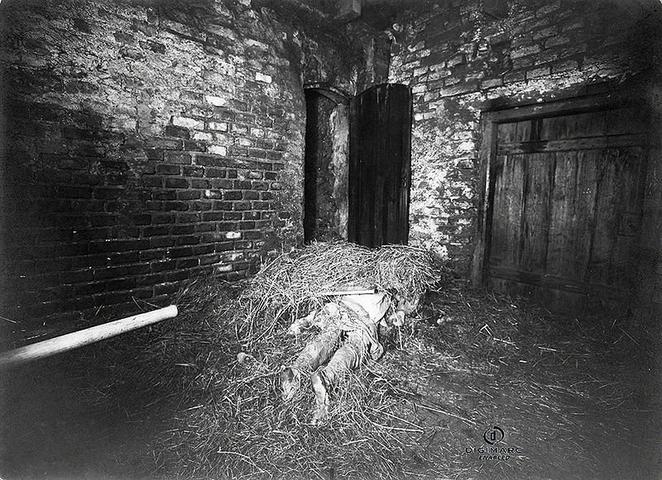 Paslaptingos žudynės Hinterkaifeko fermoje