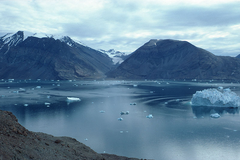 arkties salos