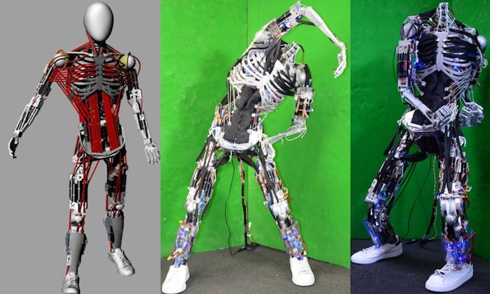 Bioroboto kūrimas