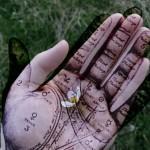 Chiromantija – visa tiesa apie žmogų iš jo delno