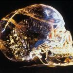 Krištolo kaukolės paslaptys (II dalis)