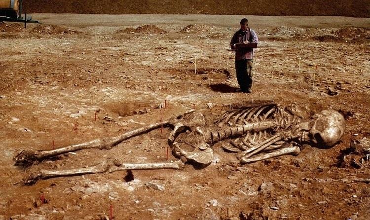 Australijoje gyvenę milžinai