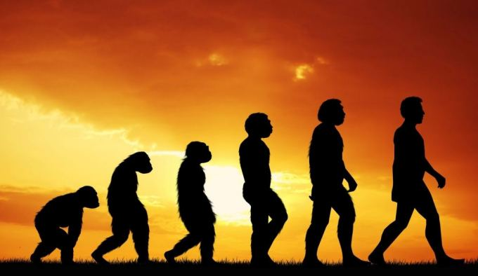 Per ateinančius 35 metus išsivystys nauja žmonių rūšis