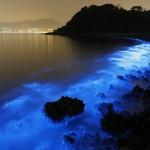 Švytintis vanduo Honkongo pajūryje