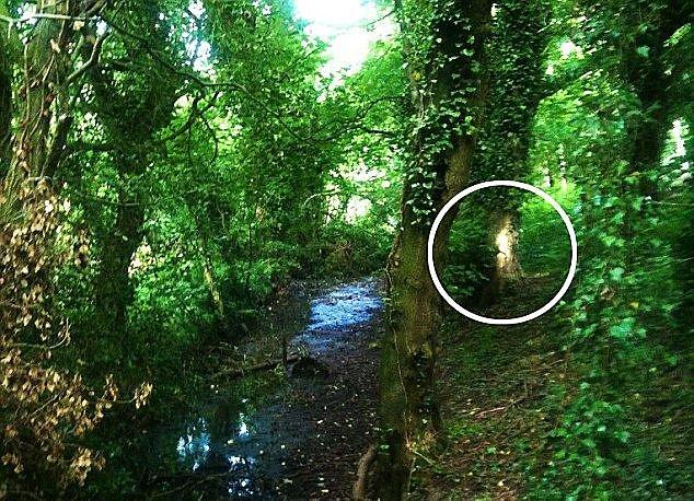 Britė nufotografavo iš už medžio išnyrantį berniuką iš praeities